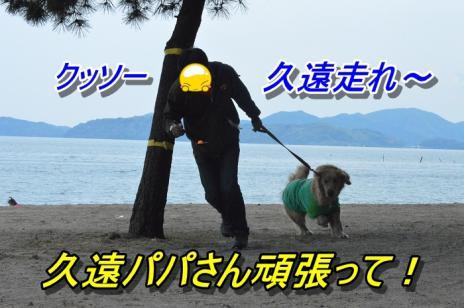 DSC_0249_20130514223032.jpg