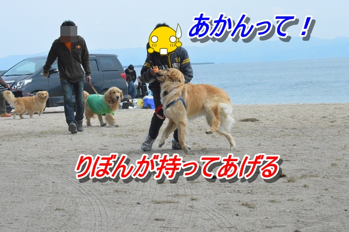 DSC_0253_20130514223106.jpg