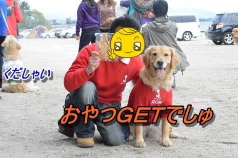 DSC_0289_20130514225034.jpg