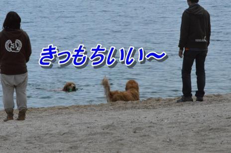 DSC_0302.jpg