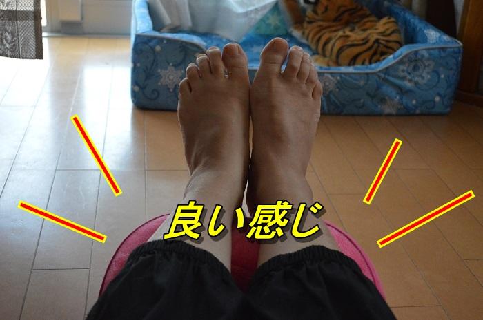 DSC_0319_20130702212943.jpg