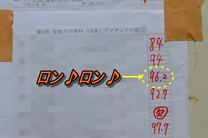 DSC_0352_20130526213020.jpg