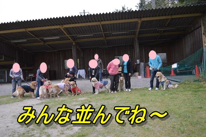 DSC_0353m.jpg