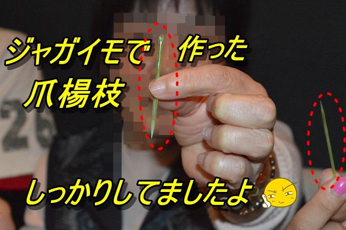 DSC_0371_20130512220132.jpg