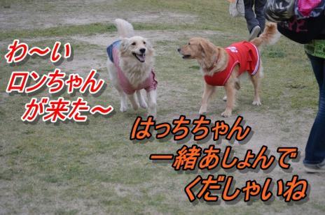 DSC_0393.jpg