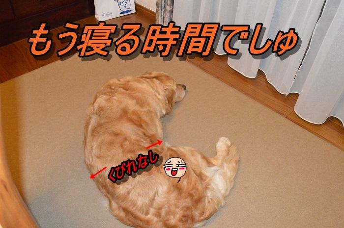 DSC_0658_20130602215412.jpg