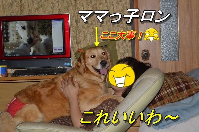 DSC_0745_20130715225250.jpg