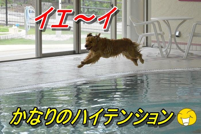 DSC_0747_20130603220638.jpg