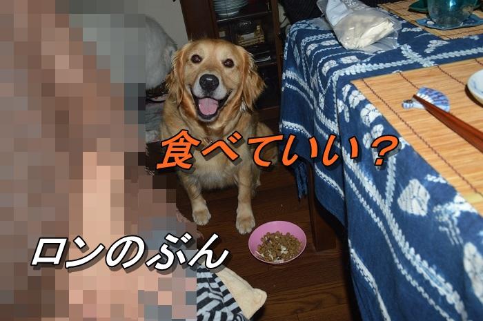 DSC_0755_20130715225407.jpg