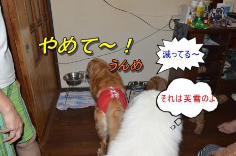 DSC_0761.jpg