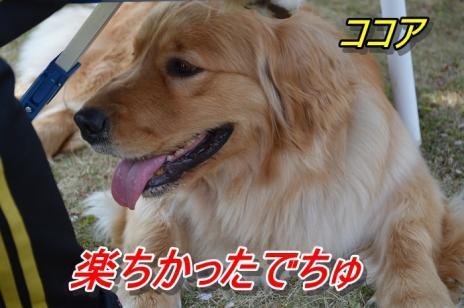 DSC_0777.jpg