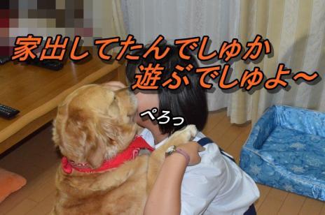 DSC_0797_20130615212615.jpg