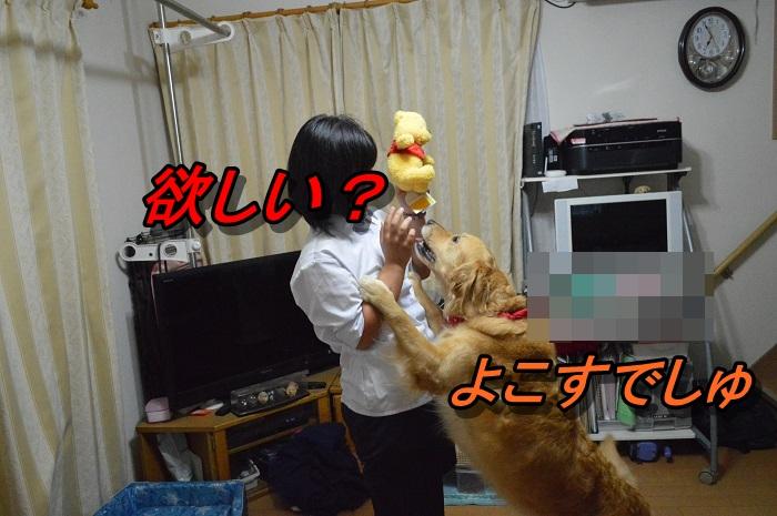 DSC_0822_20130615212614.jpg