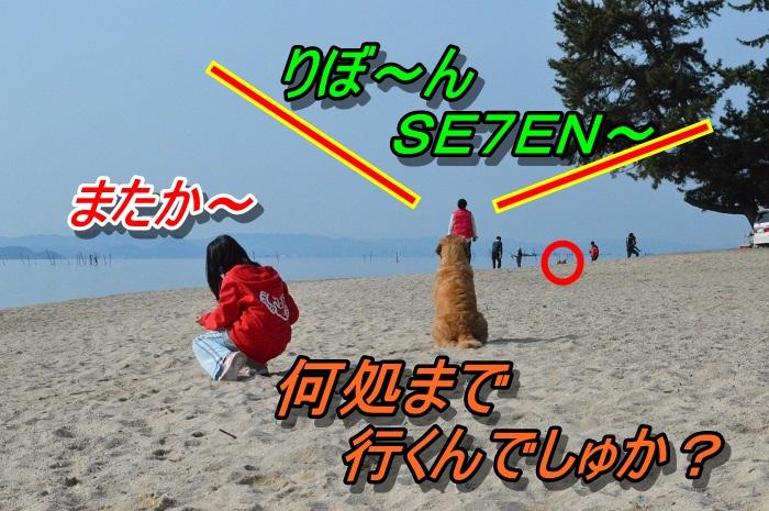DSC_0888_20130511212740.jpg