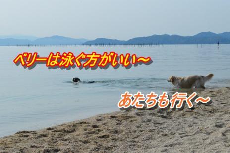 DSC_0925_20130511212832.jpg