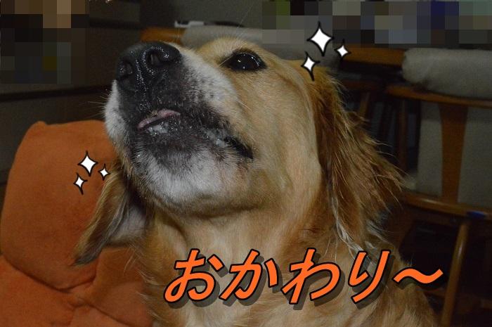 DSC_0998.jpg