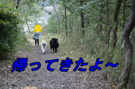 DSC_10285.jpg