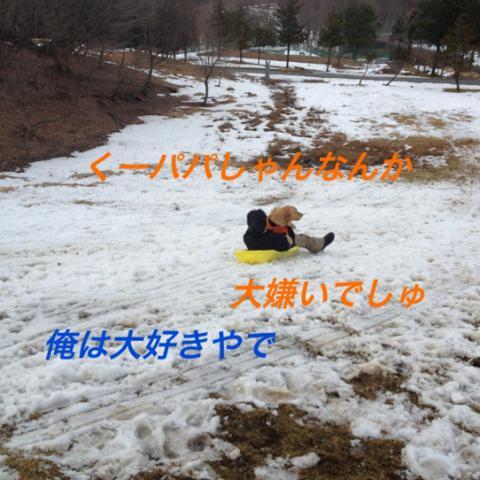 IMG_2465.jpg