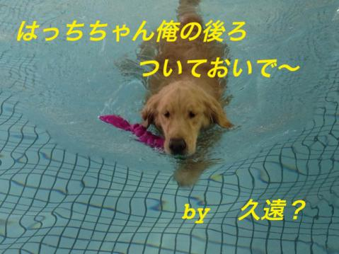 IMG_2574.jpg