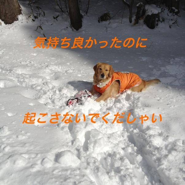 IMG_5573.jpg