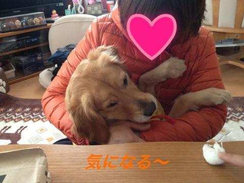 IMG_5574.jpg