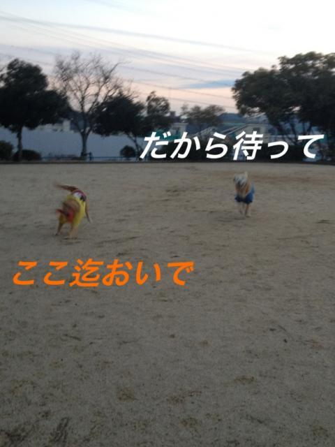 IMG_5718.jpg