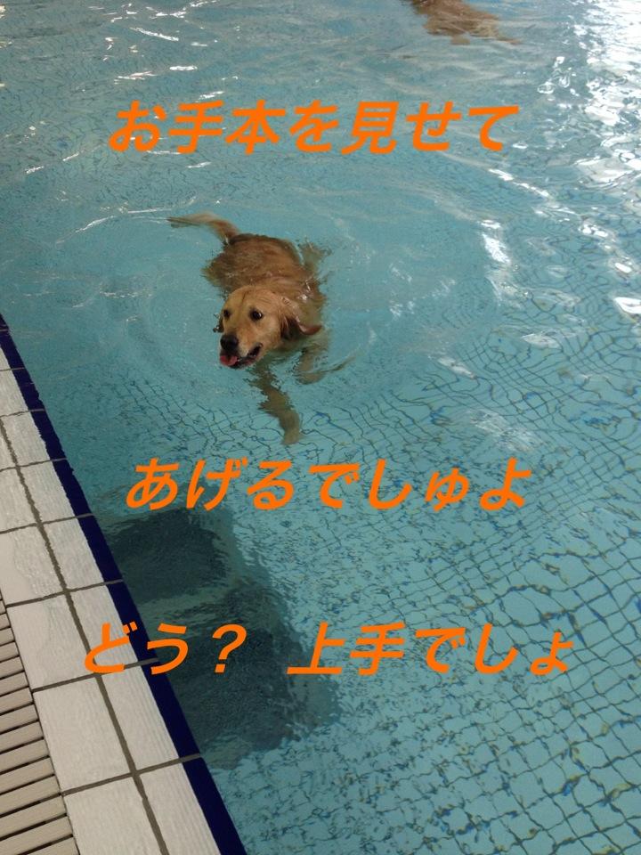 IMG_6749.jpg