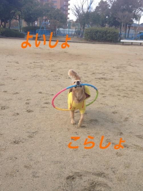IMG_7122F.jpg