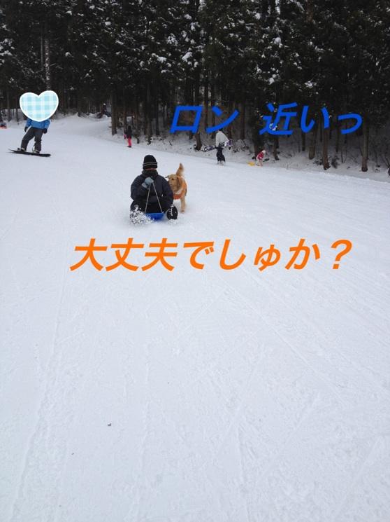 IMG_7166.jpg