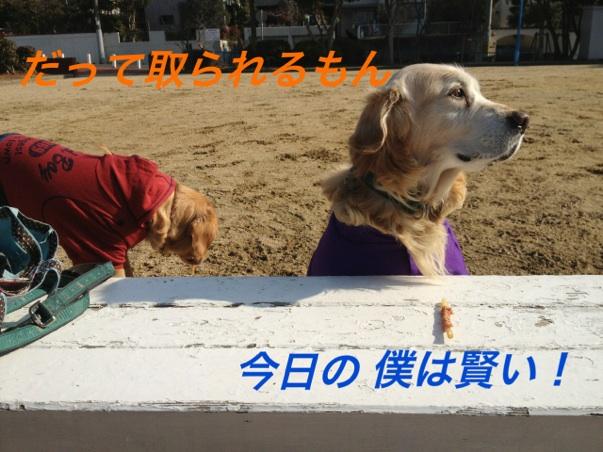 IMG_8903.jpg