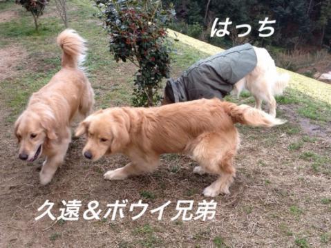 IMG_9807.jpg