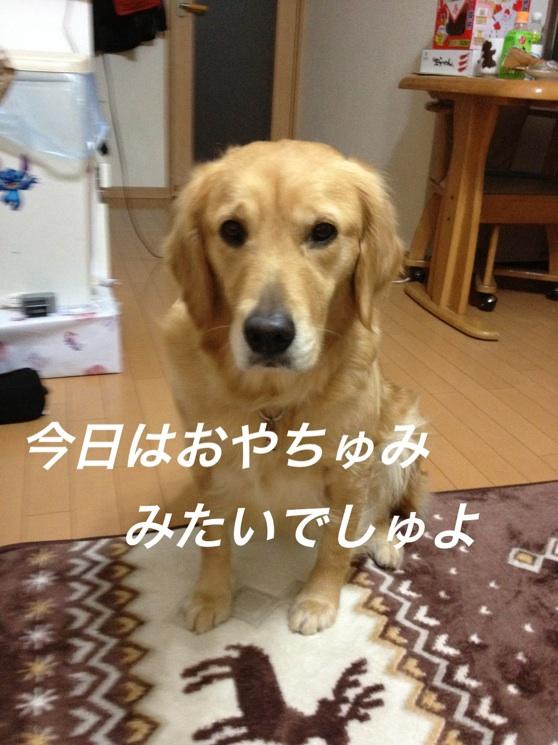 IMG_9985.jpg