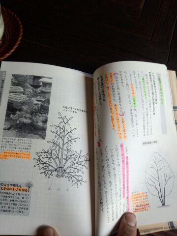 IMG_2013060210819.jpg