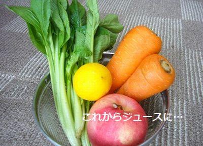 野菜セット名入り