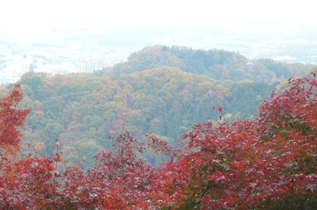 紅葉景色2