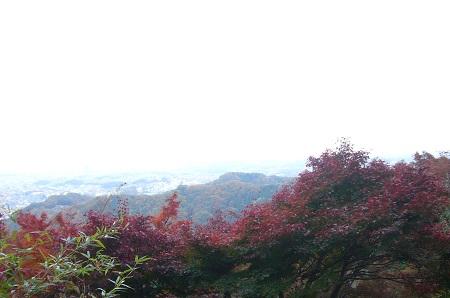 紅葉 景色