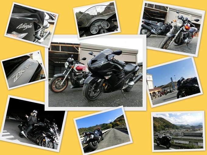 2012-11-19.jpg