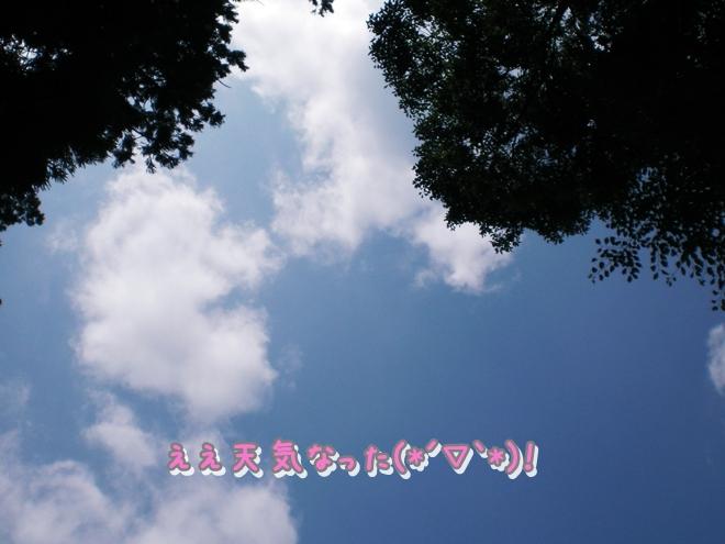 CIMG0069.jpg