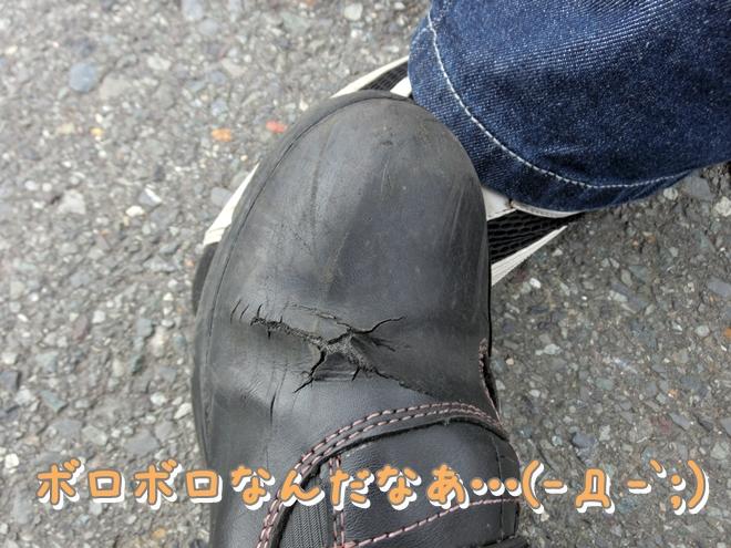 CIMG0154_20120710203308.jpg