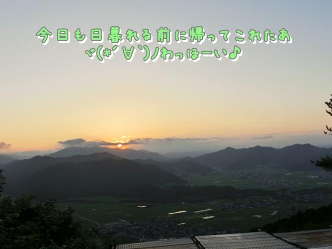 CIMG0181.jpg