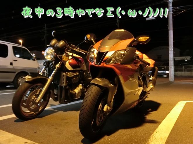 CIMG0184.jpg