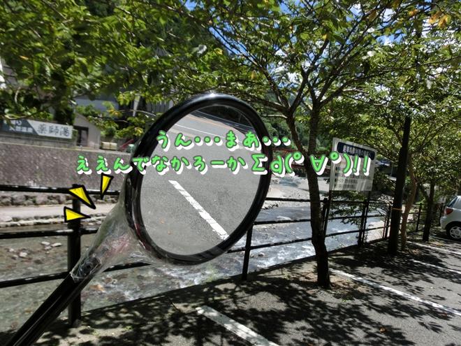 CIMG6790.jpg