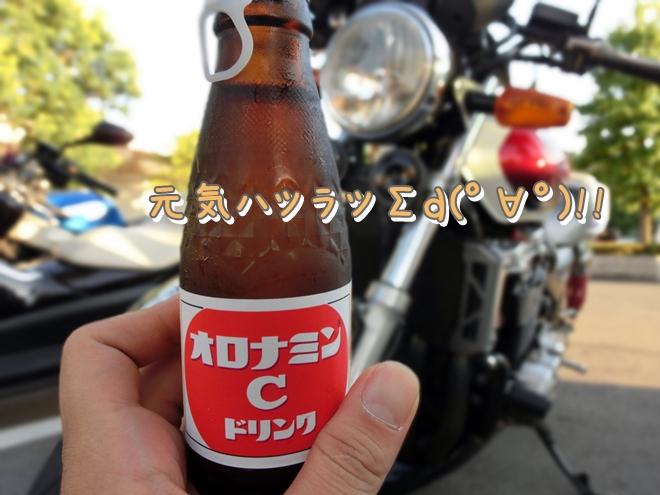 CIMG6858.jpg