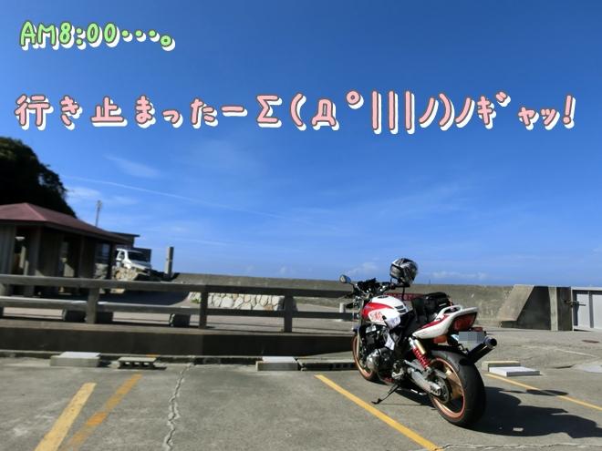 CIMG6902.jpg