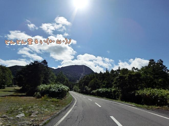 CIMG7015.jpg