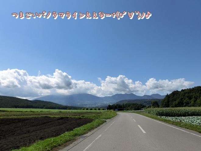 CIMG7053.jpg