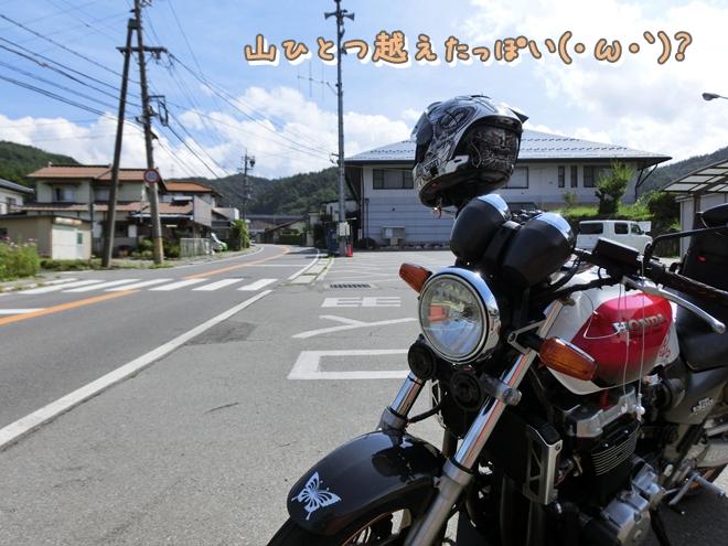CIMG7137.jpg