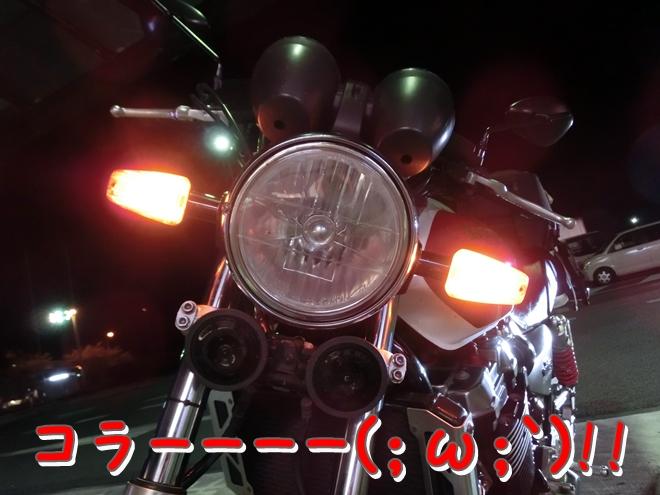 CIMG7178.jpg
