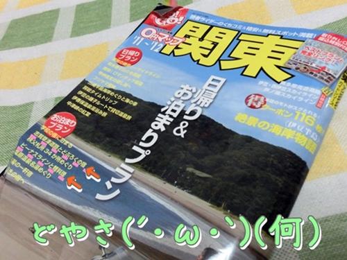 CIMG7188.jpg