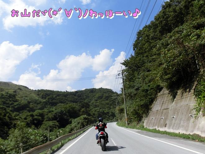 CIMG7321.jpg